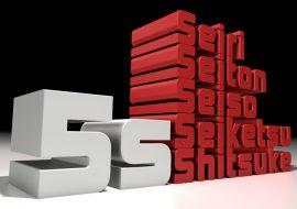 Cómo mejorar la productividad y el entorno de trabajo a través de las 5S
